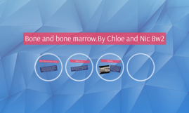 Bone and bone marrow.By Chloe and Nic 8w2