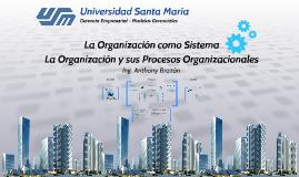 La Organización como Sistema y sus Procesos Organizacionales