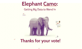 Elephant Camo: Getting Big Data to Blend In
