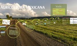 Copy of Agricultura en México