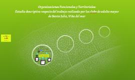 Organizaciones Funcionales y Territoriales: