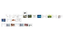 Copy of Copy of Aparato reproductor  en peces y tiempo de gestación