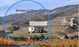 Brewer Clifton