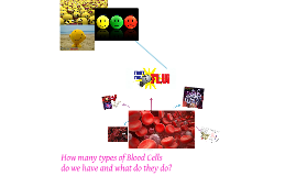 Copy of How many types of Blood Cells do we have and what do they do