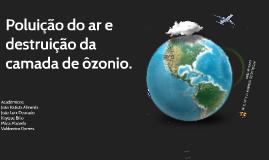 Copy of A Poluição Litoral e das Águas Oceânicas