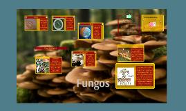 Copy of Copy of Fungos