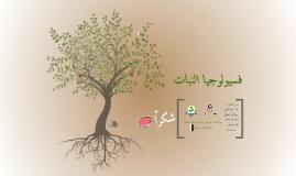 فسيولوجيا النبات