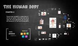 Copy of Body Systems