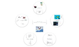 Cours RED2301 - Profils de communicateurs - Stéphanie Thibault