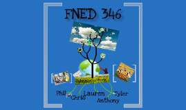 FNED 346
