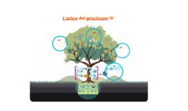 Copy of Practicum IV