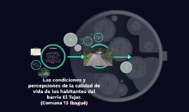 Copy of Las condiciones y percepciones de la calidad de vida de los