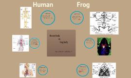Copy of Human body vs frog body