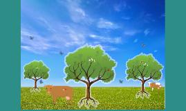 Parede Celular Vegetal e o seu papel como reserva de nutrientes