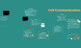 BI 4: Cell Communication