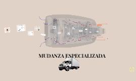 MUDANZA ESPECIALIZADA