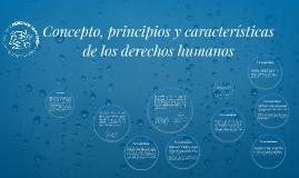 Copy of Concepto, principios y características de los derechos human