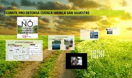 COMITE PRO DEFENSA CUENCA HIDRICA SAN SILVESTRE