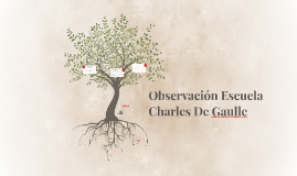 Observación Escuela Charles De Gaulle
