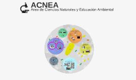 Copy of ACNEA