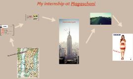 Internship Magaschoni