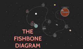 THE FISH BONE DIAGRAM