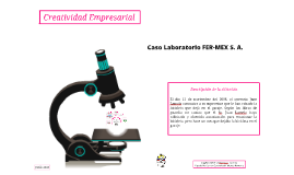 Copy of Caso Laboratorio FER-MEX S. A.