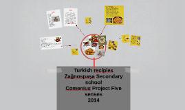 Some Turkish recipies