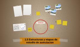 1.5 Estructuras y etapas de estudio de sumulacion