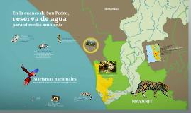 La cuenca del Río San Pedro