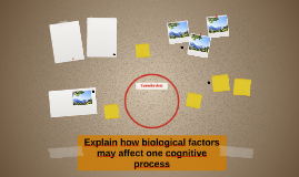 Explain how biological factors may affect one cognitive proc