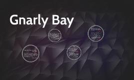 Gnarly Bay