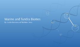 Marine and Tundra Biomes