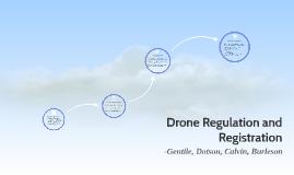 Drone Reg
