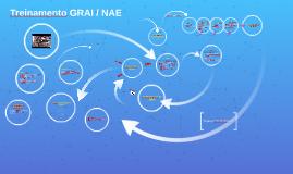 Treinamento GRAI / NAE