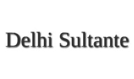 Delhi Sultante