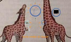 teoría evolutiva de Darwin