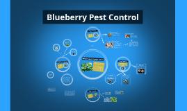Blueberry Pest Control