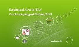 Esophageal Atresia/ Tracheoesophageal Fistula