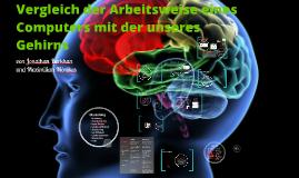 Copy of Das Gehirn,