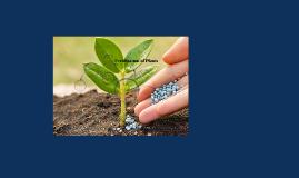 Fertilization of Plants