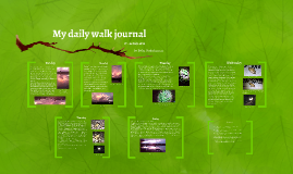 My daily walk journal