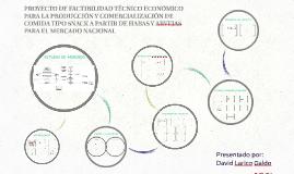 PROYECTO DE FACTIBILIDAD TÉNICO ECONÓMICO PARA LA PRODUCCIÓN