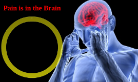 Pain is in the Brain