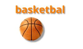 Copy of basketbal