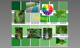 Shades of green-3rd grade
