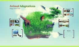 Animal Adaptations - 4th Grade