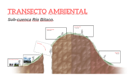TRANSECTO AMBIENTAL