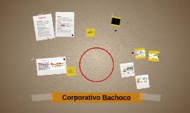 Copy of Corporativo Bachoco