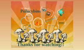 All 'bout Psilocybins